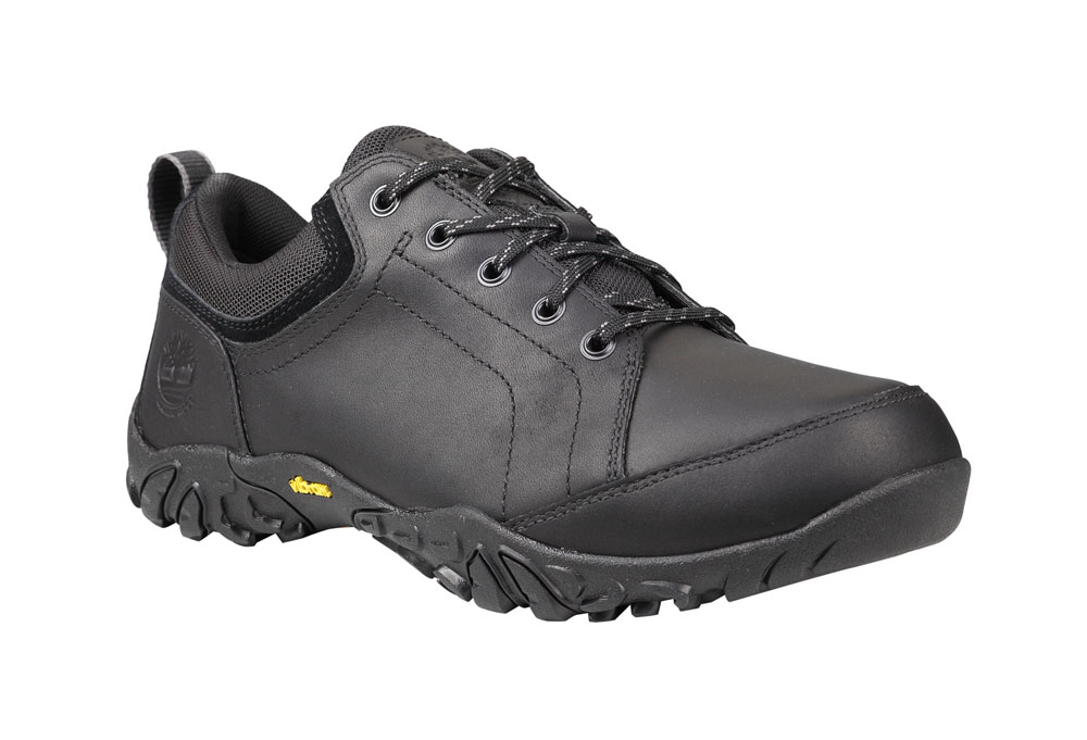 UPC 888732276289 product image for Timberland Gorham Low WP Shoes Mens black