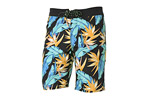 Reef Bathometer Boardshorts - Men's