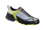 Salewa Firetail EVO Shoes - Men's