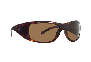 Anarchy Substitute Polarized Sunglasses