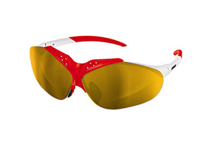 Briko Stinger Sunglasses
