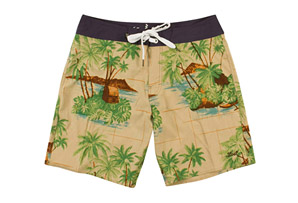 Lost Island Boardshort - Men's