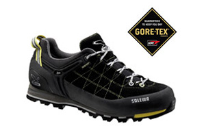 Salewa Mountain Trainer GTX Shoes - Mens