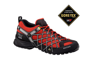 Salewa Wildfire GTX Shoes - Mens
