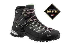 Salewa Alp Trainer Mid GTX Boot - Womens