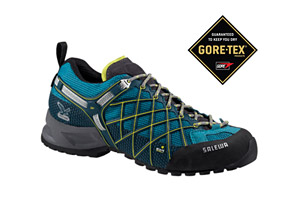 Salewa Wildfire GTX Shoes - Womens