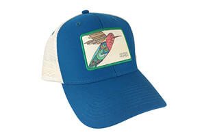 Hummingbird Baseball Hat