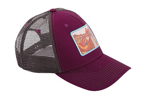 The Wave, Arizona Baseball Hat