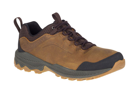 Forestbound Shoes - Men's